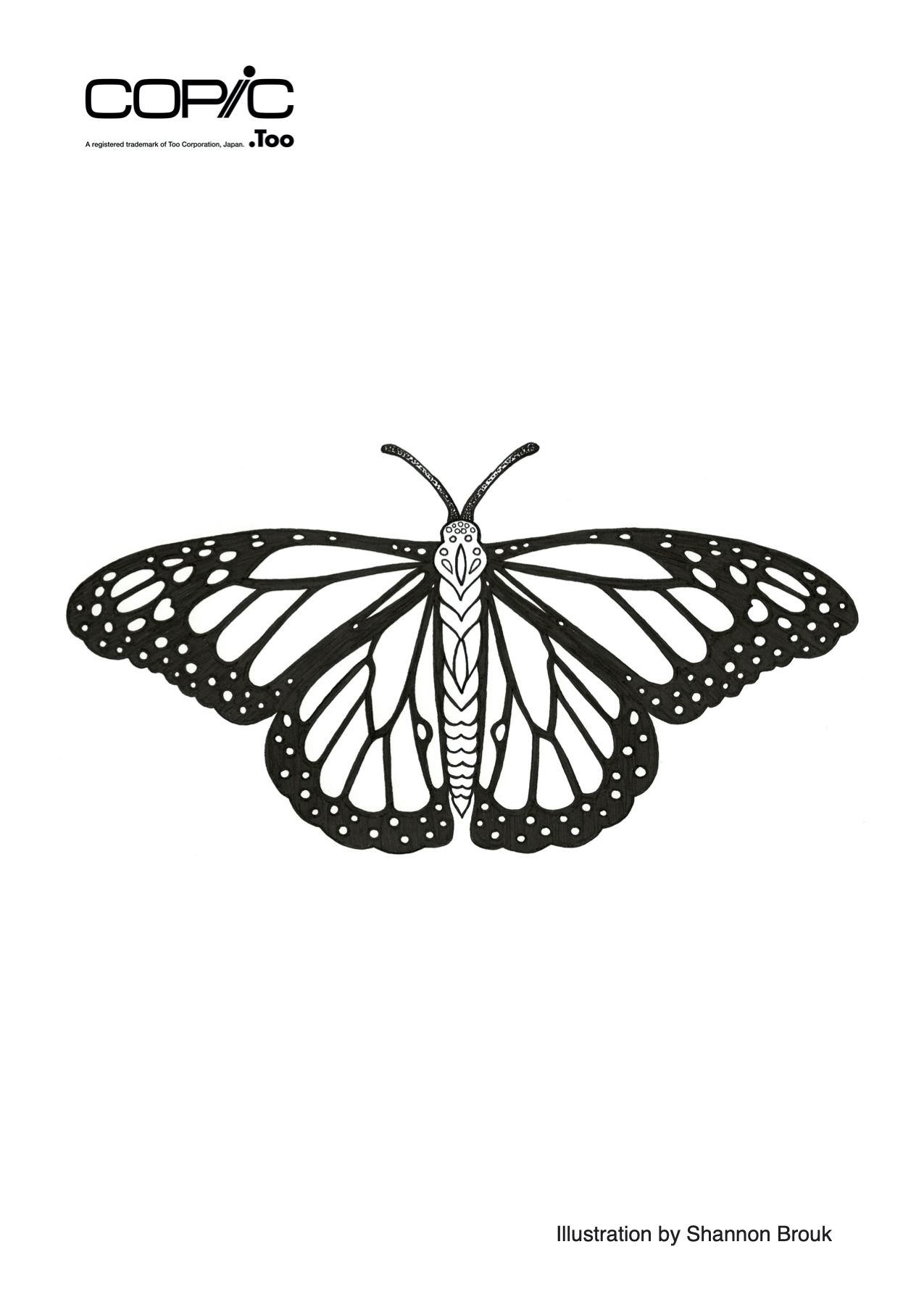 Butterfly_hobbyshow